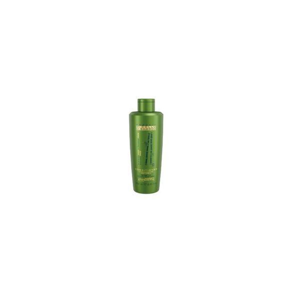 Organic Midollo Di Bamboo Parabén Mentes Kondicionáló 250ml / 1000ml